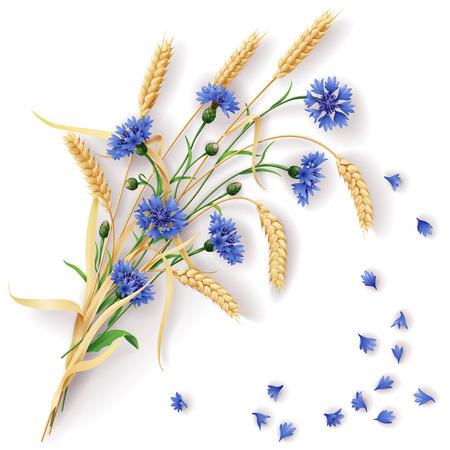 Ilustración de Bunch of wheat ears and blue cornflowers with scattered petals. - Imagen libre de derechos