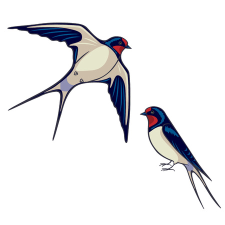 Illustration for Simplified image of sitting and flying swallows isolated on white. - Royalty Free Image