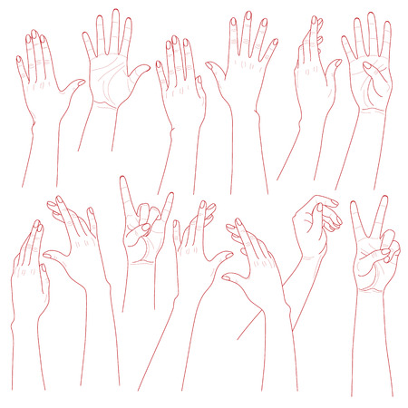 Illustration for Outlines set  of woman  hands  on white background. - Royalty Free Image