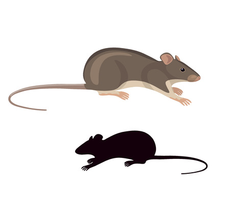 Illustration pour Simplified colored image and silhouette of field mouse isolated on white background. - image libre de droit