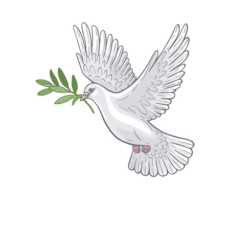 Illustration for Hand drawn white  flying dove with olive branch. - Royalty Free Image