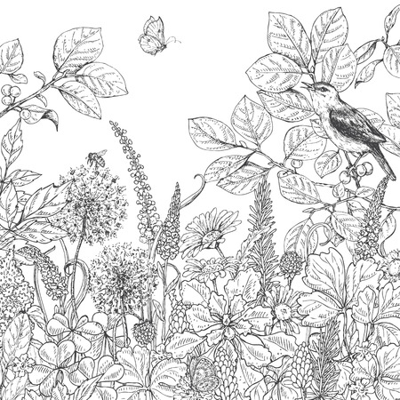 Illustration pour Hand drawn floral elements. Black and white flowers, plants, butterfly and sitting songbird on branch. Monochrome vector sketch. - image libre de droit