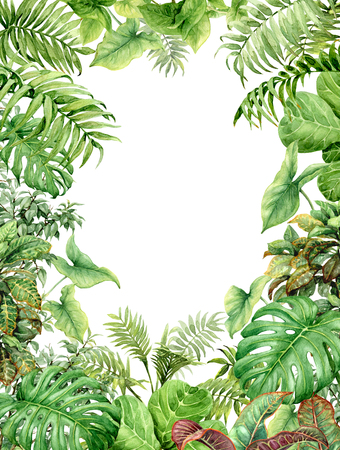 Foto de Hand drawn  branches and leaves of tropical plants. Natural green background with space for text. Watercolor rectangle vertical floral frame. - Imagen libre de derechos