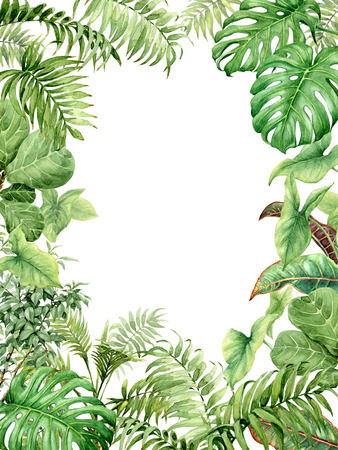 Photo for Hand drawn  branches and leaves of tropical plants. Natural green background with space for text. Watercolor rectangle vertical floral frame. - Royalty Free Image