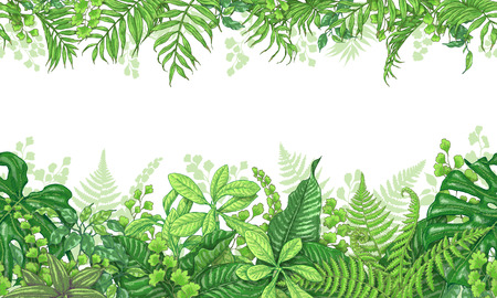 Illustration pour Hand drawn branches and leaves of tropical plants. Vivid line horizontal floral pattern. Green two-sided seamless border. Vector sketch. - image libre de droit