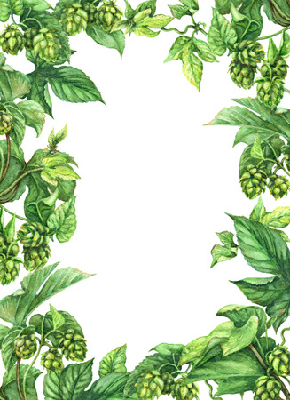 Foto de Hand drawn hop branches. Watercolor green rectangle vertical frame  with leaves and cones of hops. Octoberfest theme. Space for text. - Imagen libre de derechos