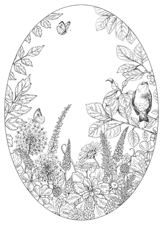 Illustration for Hand drawn floral elements. Black and white flowers, plants, butterflies and sitting bird on branch. Monochrome vector sketch.  Oval frame.  Space for text. - Royalty Free Image