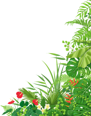 Illustration for Colorful leaves and flowers of tropical plants  floral background with space for text. Vertical side corner border made with monstera, fern, palm fronds. Tropic rainforest foliage.  - Royalty Free Image