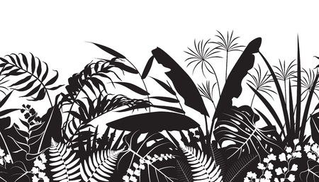 Illustration pour Seamless line horizontal pattern made with tropical plants silhouette. Black and white floral texture with flowers and leaves in row. - image libre de droit