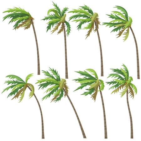 Ilustración de Set of palm trees on wind storm isolated on white background. Tropical landscape element design. Vector flat illustration. - Imagen libre de derechos