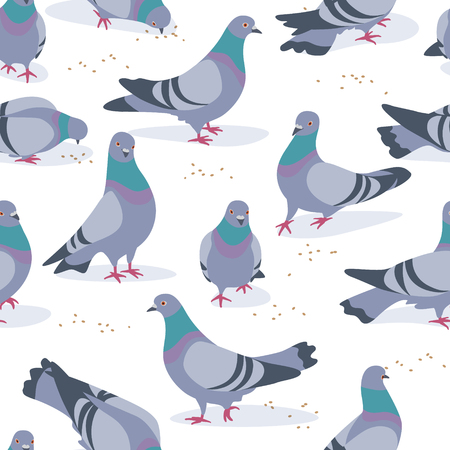 Ilustración de Seamless pattern made with rock doves on white background. Bluish pigeons in motion – walking and eating grains. Simplified image of gray birds group. Vector flat illustration. - Imagen libre de derechos