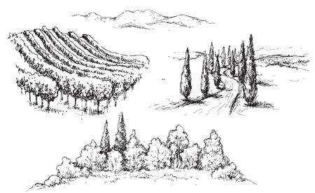 Illustration pour Hand drawn rural scene fragments with vineyard, hills, road and trees. Monochrome rustic landscape illustration. Vector sketch. - image libre de droit