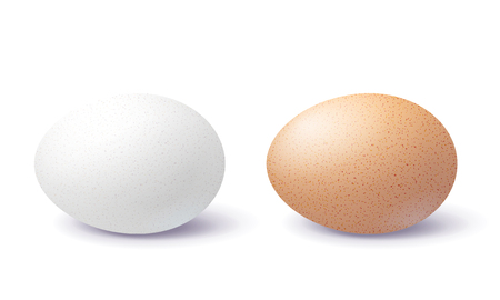 Ilustración de White and brown 3d egg with shadow on surface isolated on white background. Two close-up realistic chicken blank and spotted eggs.  - Imagen libre de derechos