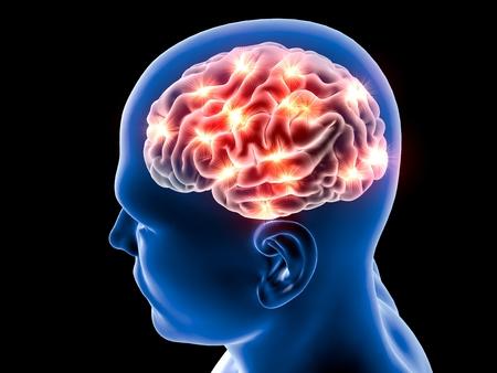 Foto de Brain neurons synapse, anatomy body, head profile, disease - Imagen libre de derechos