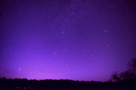 Photo pour Beautiful purple night sky with many stars above the forest. Milkyway space background - image libre de droit