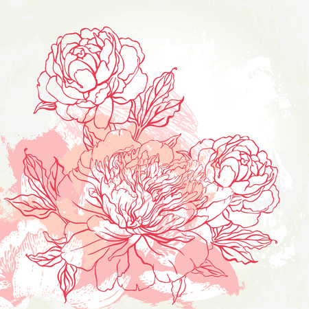Foto de Beautiful peony bouquet design on beige background. Hand drawn vector illustration. - Imagen libre de derechos