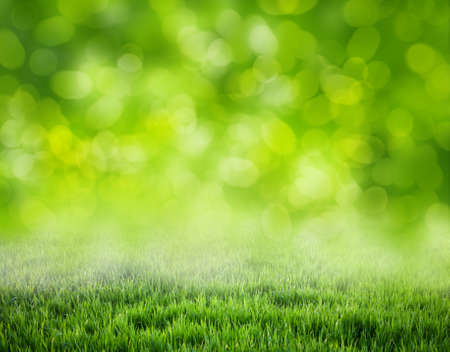 Photo pour grass background - image libre de droit
