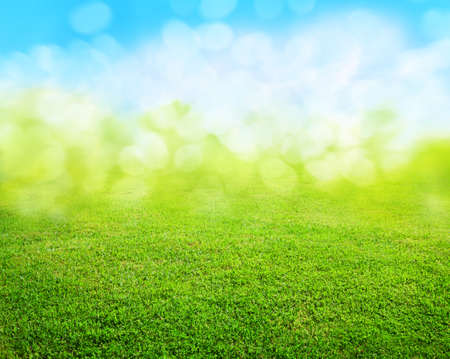 Photo for grass background - Royalty Free Image