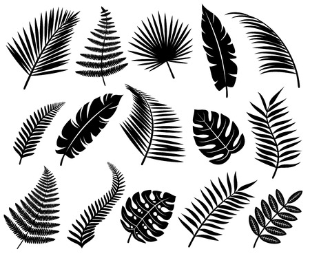 Illustration for Set of tropical leaves. Vector - Royalty Free Image