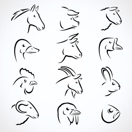 Illustration for Farm animals set. Vector - Royalty Free Image