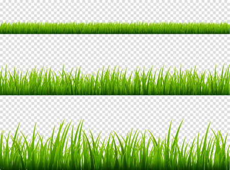 Illustration pour Green grass meadow border vector pattern. Spring or summer plant field lawn. Grass background. - image libre de droit