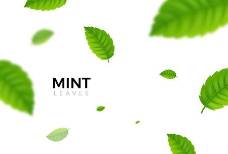 Ilustración de Green eco mint leaf background. Ecology mint pattern design plant illustration. - Imagen libre de derechos