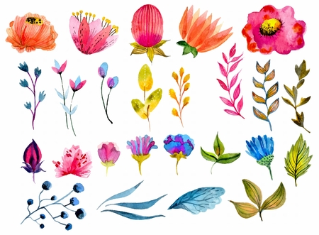 Illustration for Beautiful Watercolor flower set over white background for design - Royalty Free Image
