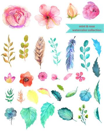 Ilustración de Watercolor floral collection, mint and rose for beautiful design - Imagen libre de derechos
