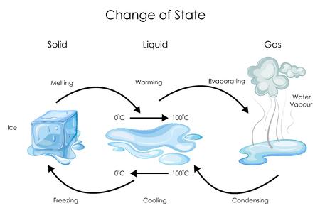 Ilustración de Education Chart of Biology for Change of State for Water Diagram - Imagen libre de derechos
