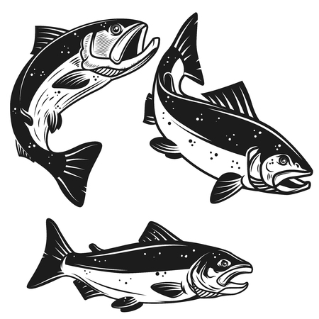 Illustration pour Set of salmon fish icons isolated on white background. Design element for poster, label, emblem, sign, t shirt vector illustration. - image libre de droit