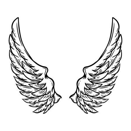 Illustration for Hand drawn wings isolated on white background. Design element for poster, card, shirt. Vector illustration - Royalty Free Image