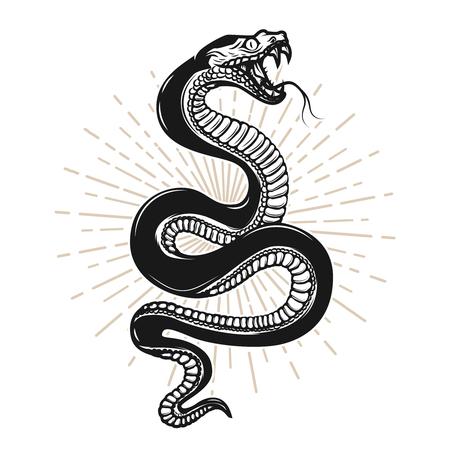 Illustration pour Snake illustration on white background - image libre de droit