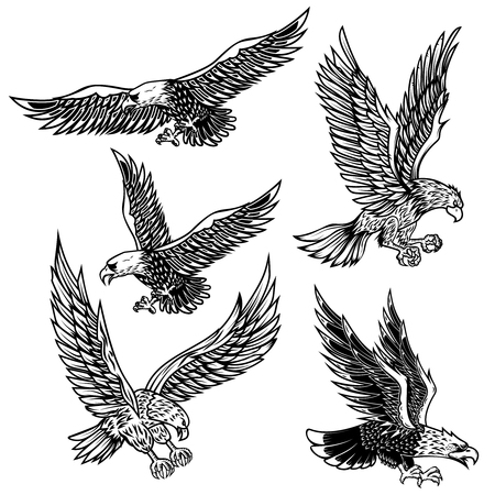 Illustration pour Set of eagles illustrations. Design element for logo, label, emblem, sign, poster, t shirt. Vector image - image libre de droit