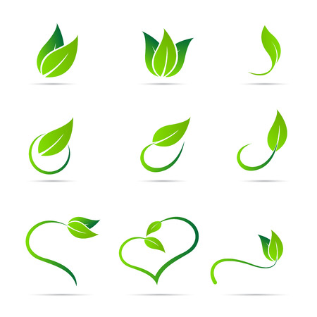 Ecology leaf vector design isolated on white background.