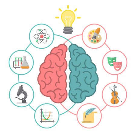 Illustration pour Conceptual flat illustration of left and right hemispheres of the brain and different icons of the logical and creative activities - image libre de droit