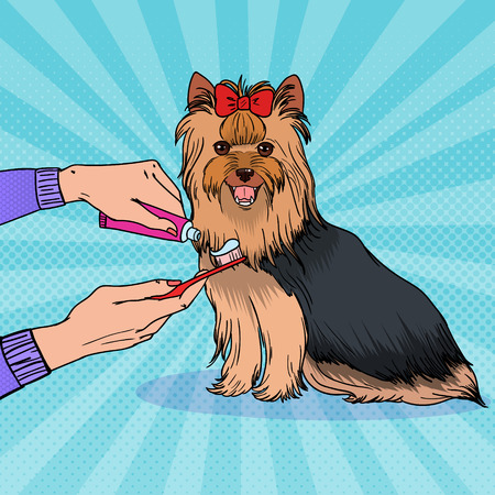 Illustration pour Pop art female hand holding toothbrush with toothpaste. Brushing teeth Yorkshire terrier. Pet health care. - image libre de droit