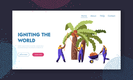 Ilustración de Palm Oil Producing. Workers Collect Coconuts from Palm Tree, Seasonal Work, Laborers Taking Crop on African or Asian Plantation Website Landing Page, Web Page. Cartoon Flat Vector Illustration, Banner - Imagen libre de derechos