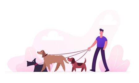 Illustrazione per Breeder Male Character Walking with Dogs Team Relaxing in Park. Leisure Communication Love Care of Animals Outdoor Activity. People Spending Time with Pets Outdoors Cartoon Flat Vector Illustration - Immagini Royalty Free