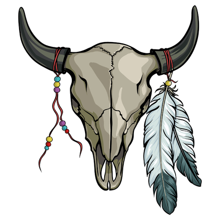 Illustration for Hand drawn buffalo skull with feather. Native American bull skeleton vector illustration. - Royalty Free Image