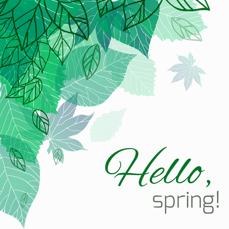 Ilustración de Spring vector card with doodle and green leaves for postcard, flyers, brochures and your business - Imagen libre de derechos