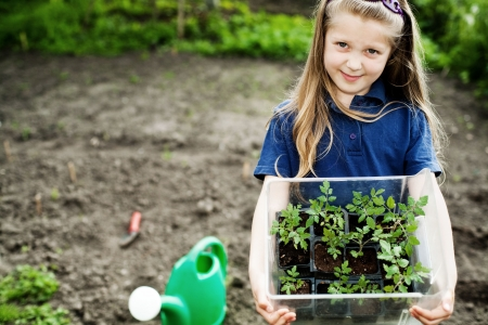Photo pour An image of a nice little girl with seedlings - image libre de droit