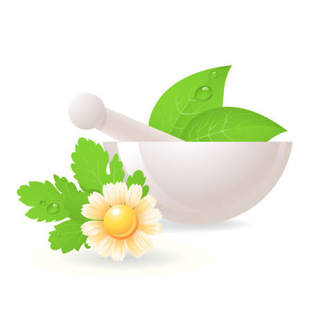 Ilustración de Mortar with herbs and camomile,alternative medicine. - Imagen libre de derechos