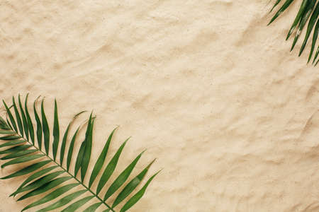 Photo for Tropical leaves on the sand, top view. Summer background with copy space and sand texture. Top view. - Royalty Free Image