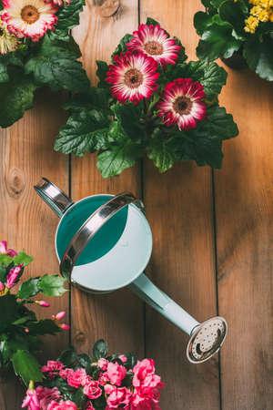 Foto de Watering can with flowers. - Imagen libre de derechos