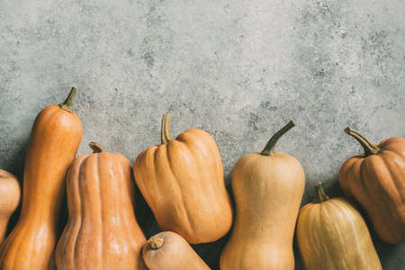 Photo for Lots of orange pumpkins on a grey background - Royalty Free Image