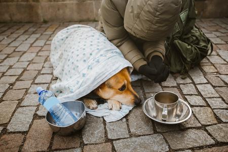 Foto de A beggar beggar begging with a dog wrapped in a blanket to ask for help in the city of Prague in winter cold. - Imagen libre de derechos