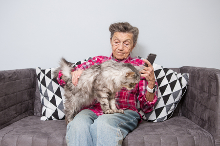 Foto per very old senior Caucasian grandmother with gray hair and deep wrinkles sitting home on sofa in jeans and shirt with gray fluffy shaggy cat and using smart phone technology in hands. Pensioner and pet. - Immagine Royalty Free