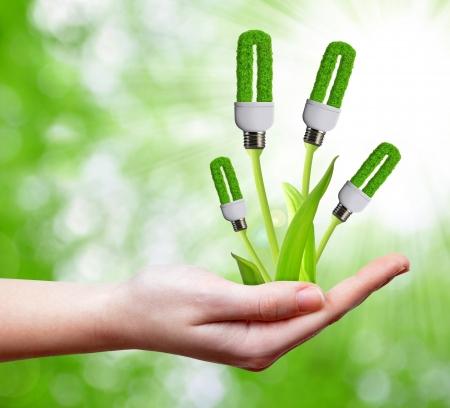 Photo pour eco energy bulb in hand  - image libre de droit