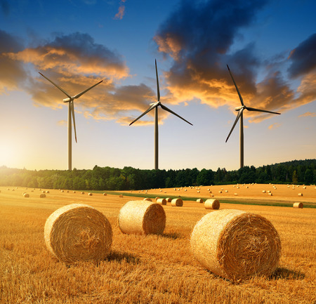 Photo for Straw bales on farmland and wind turbines at sunset - Royalty Free Image