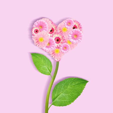 Photo pour Heart of pink gerbera flowers. - image libre de droit